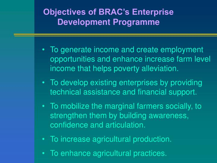 Objectives of BRAC's Enterprise Development Programme