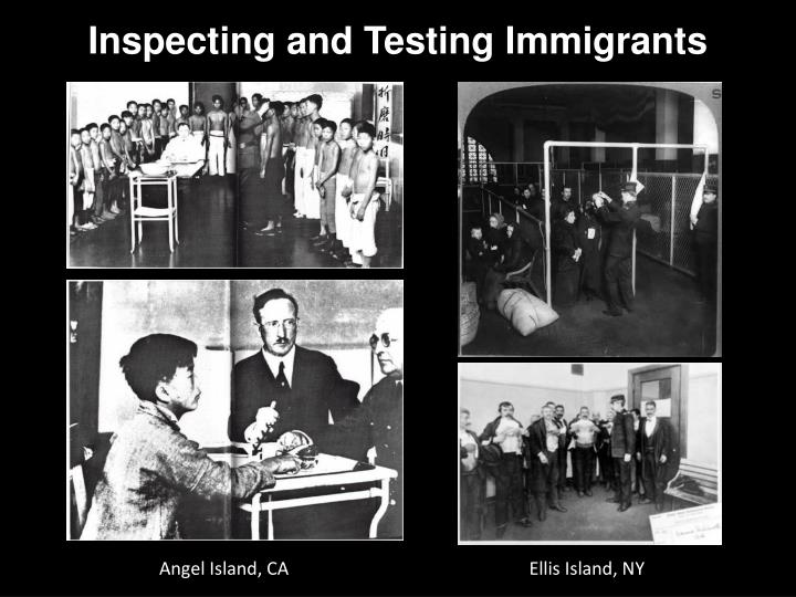 Inspecting and Testing Immigrants