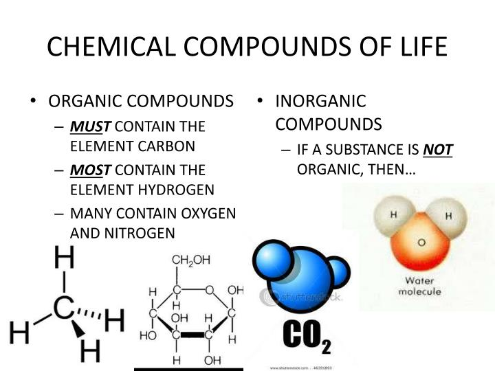Chemical compounds of life1