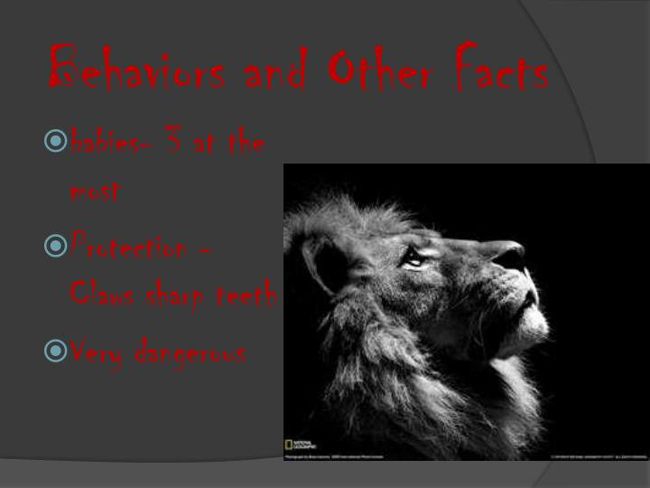 Behaviors and Other Facts