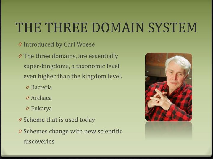 THE THREE DOMAIN SYSTEM