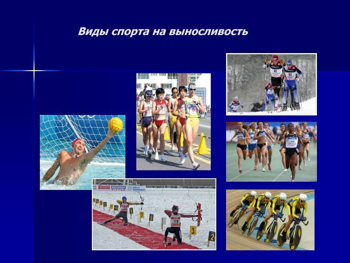 Виды спорта на выносливость