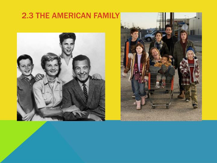 2.3 The American family