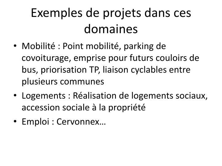 Exemples de projets dans ces domaines
