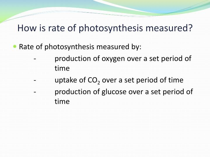 How is rate of photosynthesis measured?