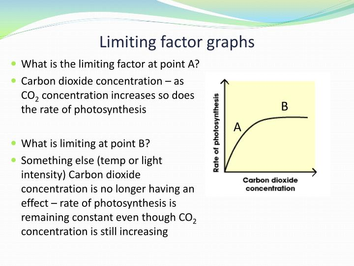 Limiting factor graphs