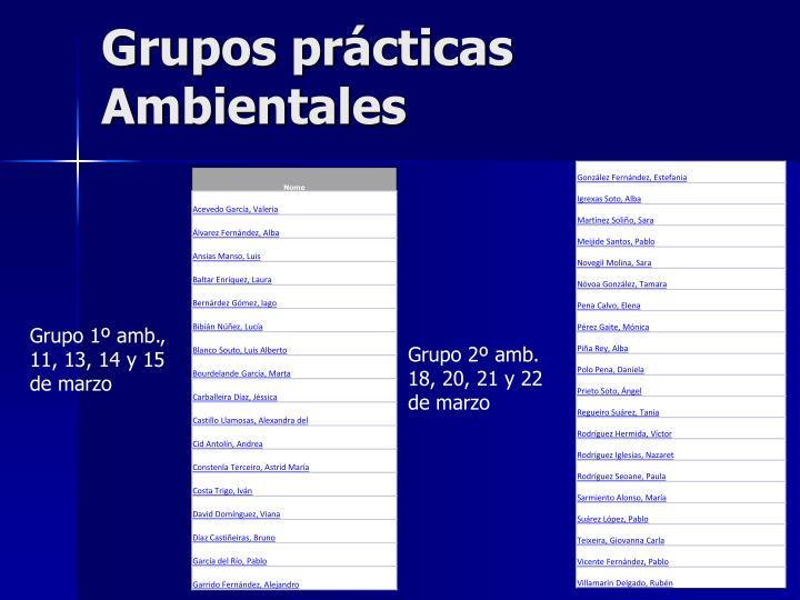 Grupos prácticas Ambientales
