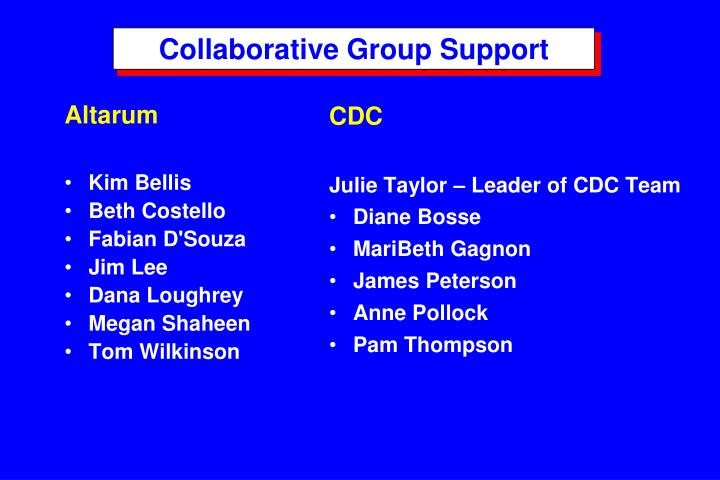 Collaborative Group Support
