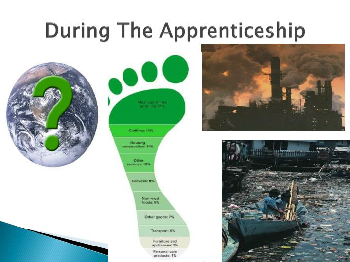 During The Apprenticeship