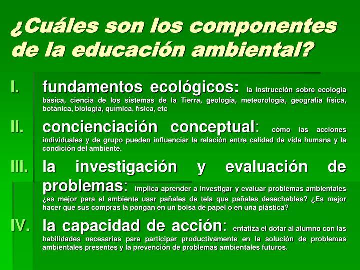 ¿Cuáles son los componentes de la educación ambiental?