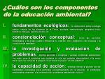 cu les son los componentes de la educaci n ambiental