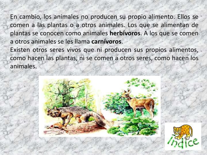 En cambio, los animales no producen su propio alimento. Ellos se comen a las plantas o a otros animales. Los que se alimentan de plantas se conocen como animales