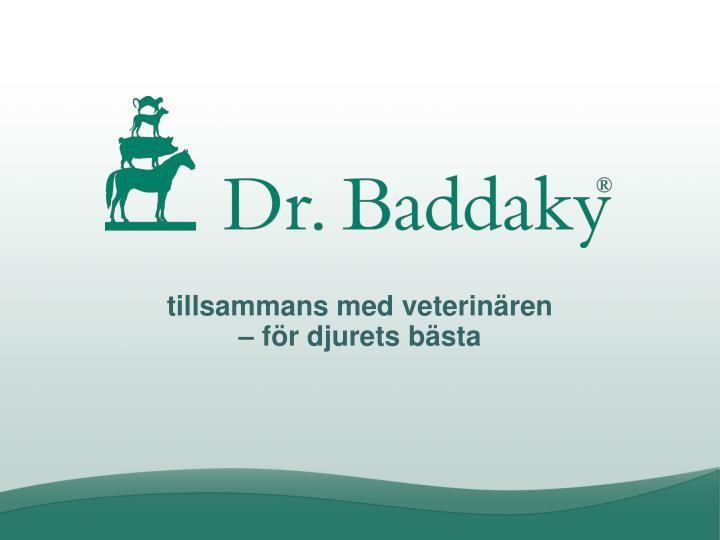 tillsammans med veterinären