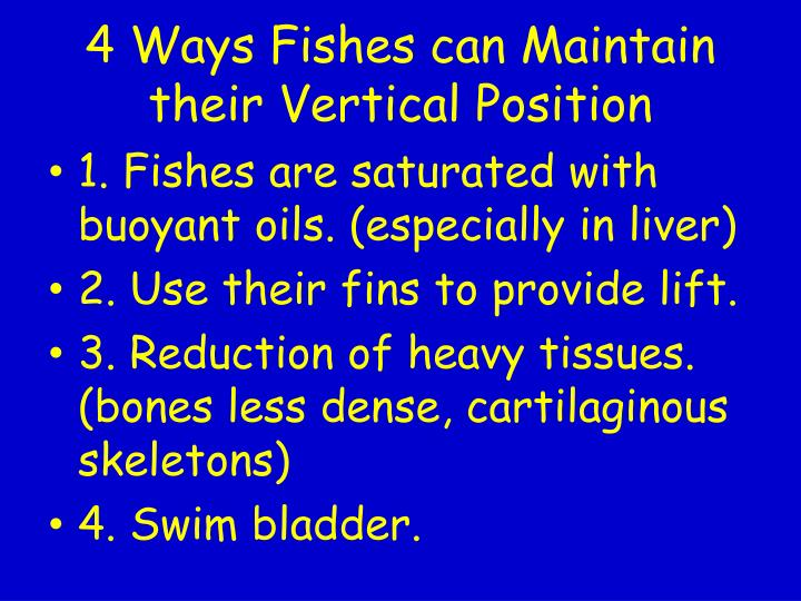 4 Ways Fishes can Maintain their Vertical Position