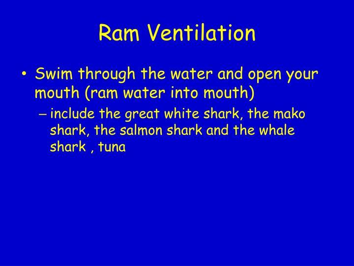 Ram Ventilation