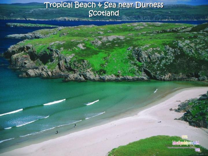Tropical Beach & Sea near Durness