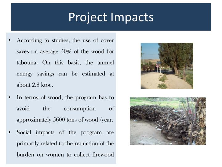 Project Impacts