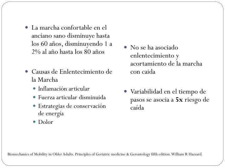 La marcha confortable en el anciano sano disminuye hasta los 60 años, disminuyendo 1 a 2% al año hasta los 80 años