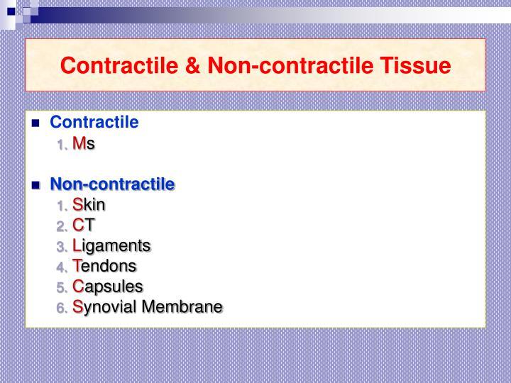 Contractile & Non-contractile Tissue