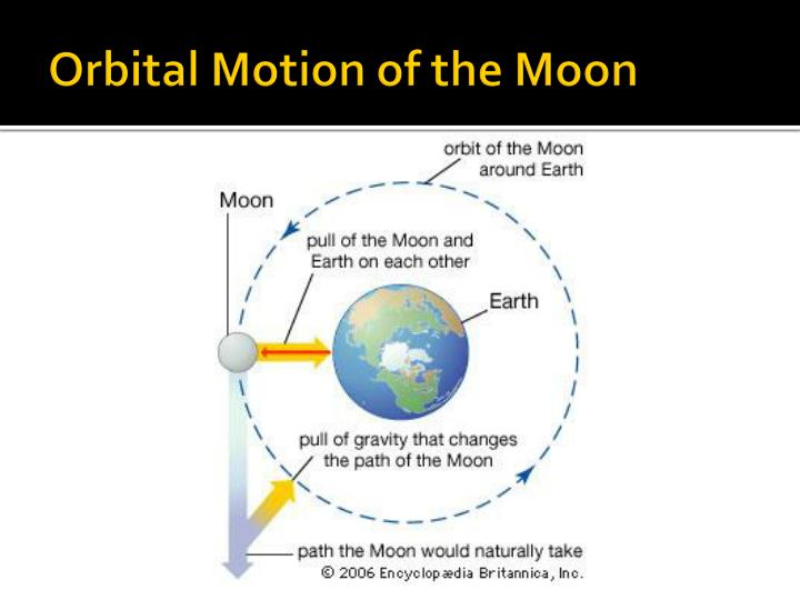 Orbital Motion of the Moon