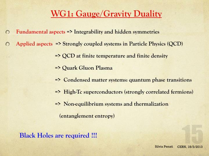 WG1: Gauge/Gravity Duality