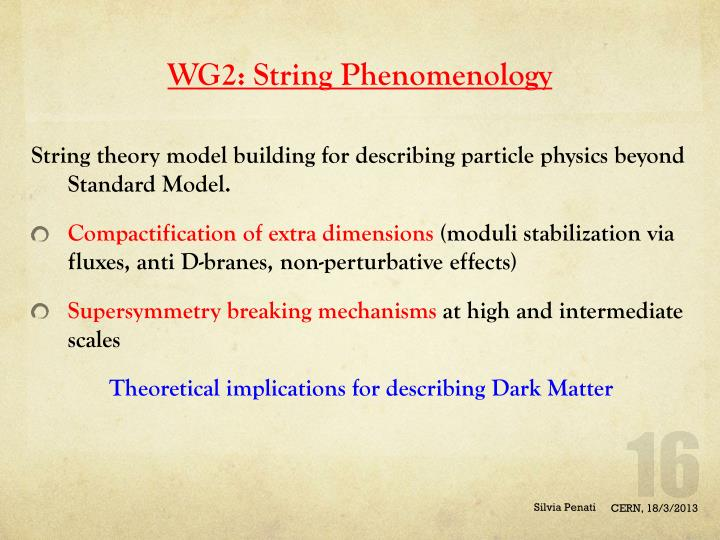 WG2: String Phenomenology