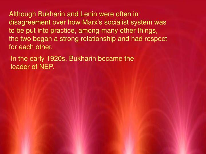 Although Bukharin and Lenin were often in disagreement over how Marx's socialist system was to be put into practice, among many other things, the two began a strong relationship and had respect for each other.