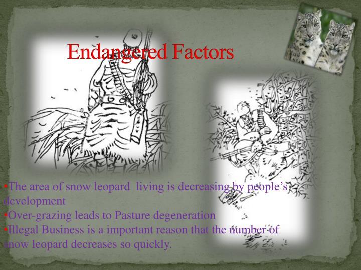 Endangered Factors