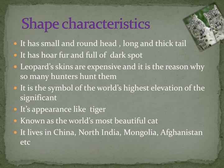 Shape characteristics