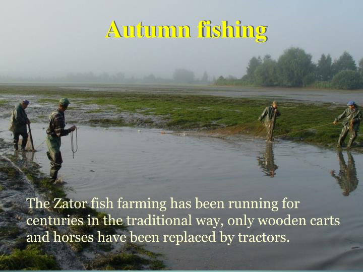 Autumn fishing