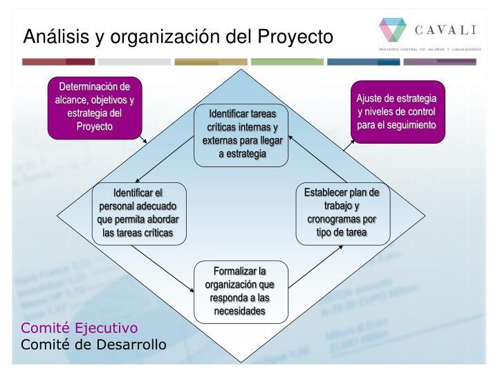 Análisis y organización del Proyecto