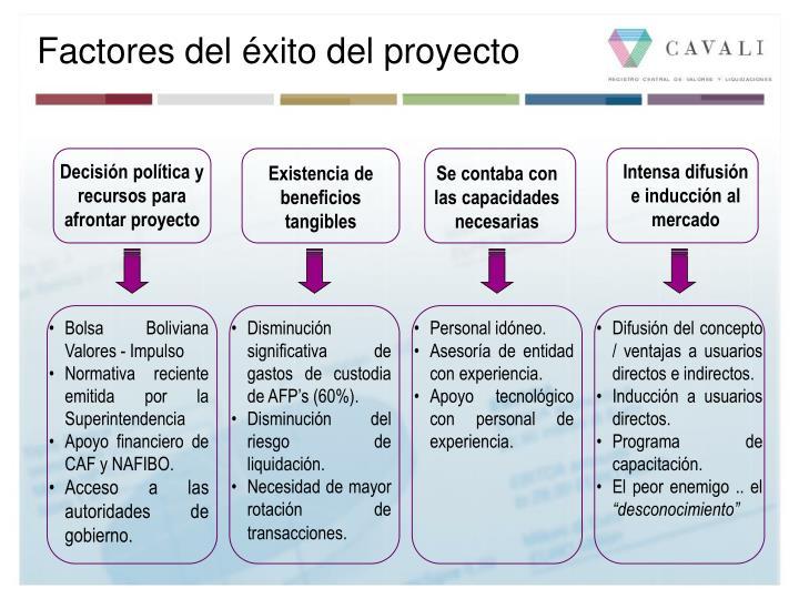 Factores del éxito del proyecto