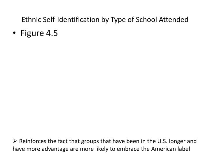 Ethnic Self-Identification by Type of School Attended