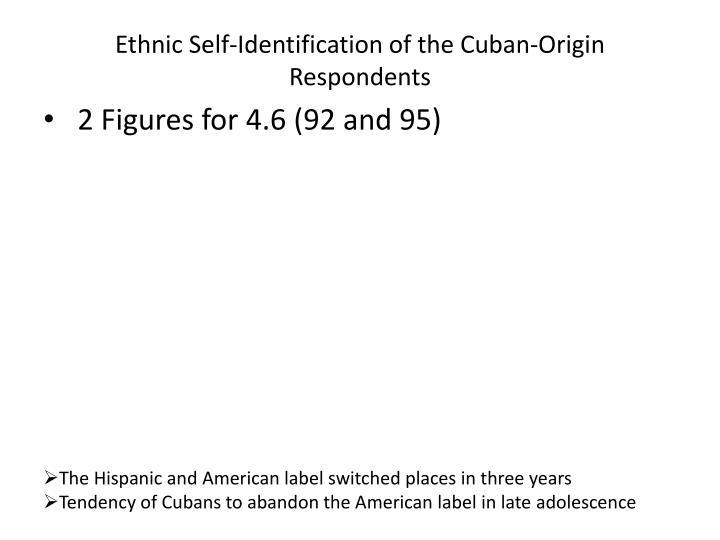 Ethnic Self-Identification of the Cuban-Origin Respondents
