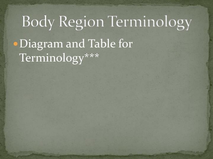 Body Region Terminology