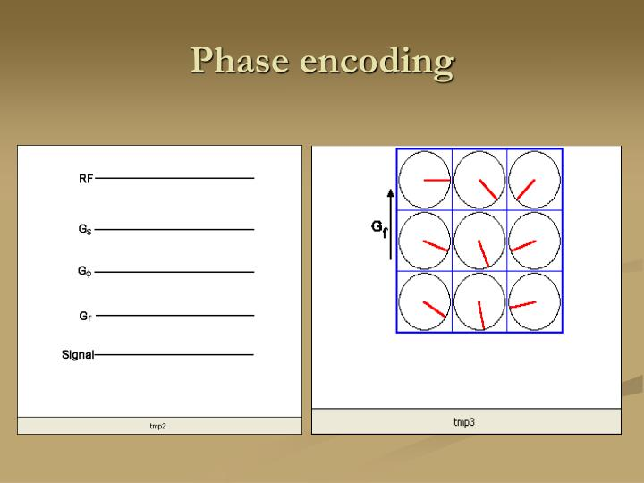 Phase encoding