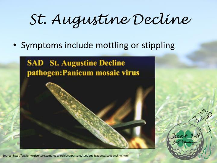 St. Augustine Decline