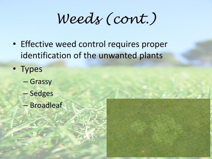 Weeds (cont.)