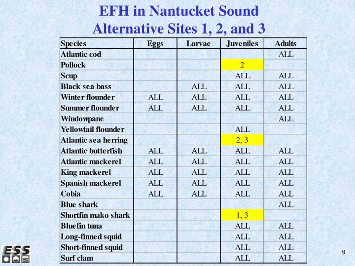 EFH in Nantucket Sound