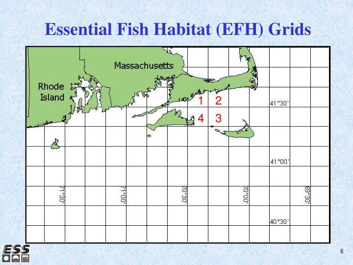 Essential Fish Habitat (EFH) Grids