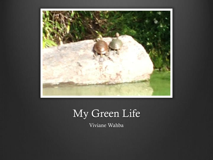 My Green Life