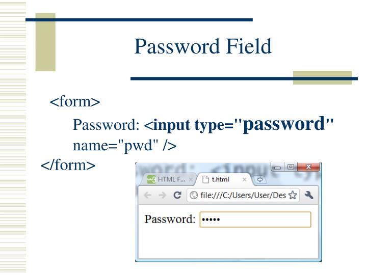 Password Field
