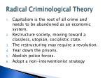 radical criminological theory