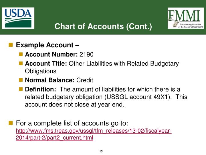 Chart of Accounts (Cont.)