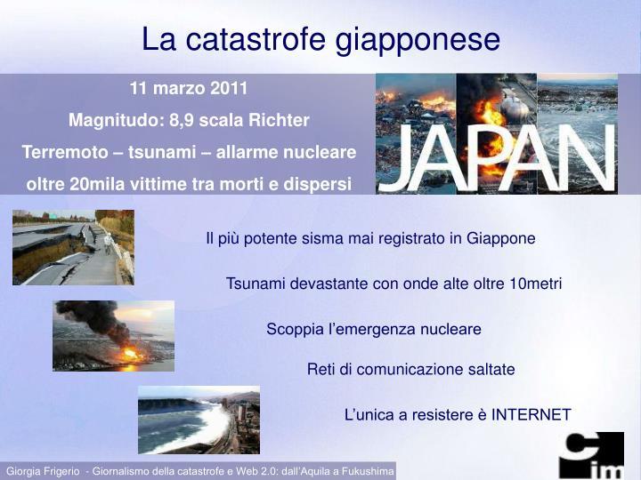 La catastrofe giapponese