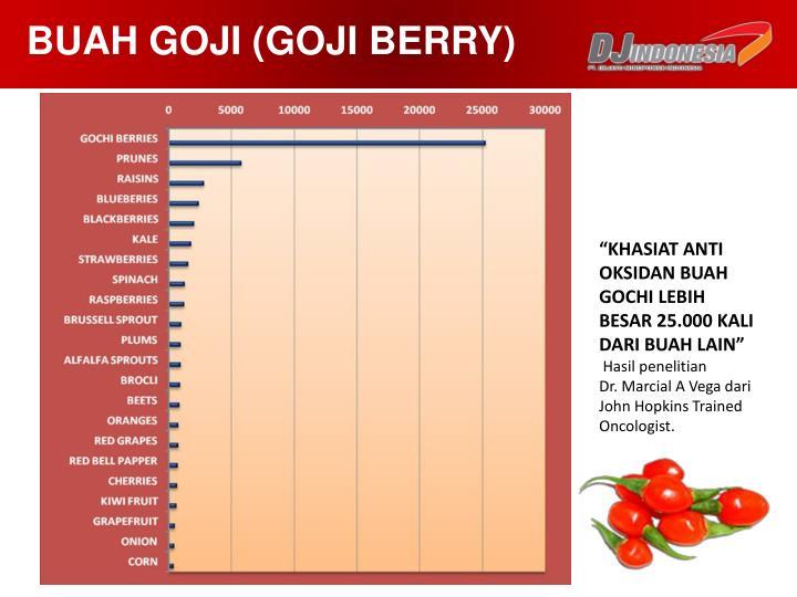 BUAH GOJI (GOJI BERRY)
