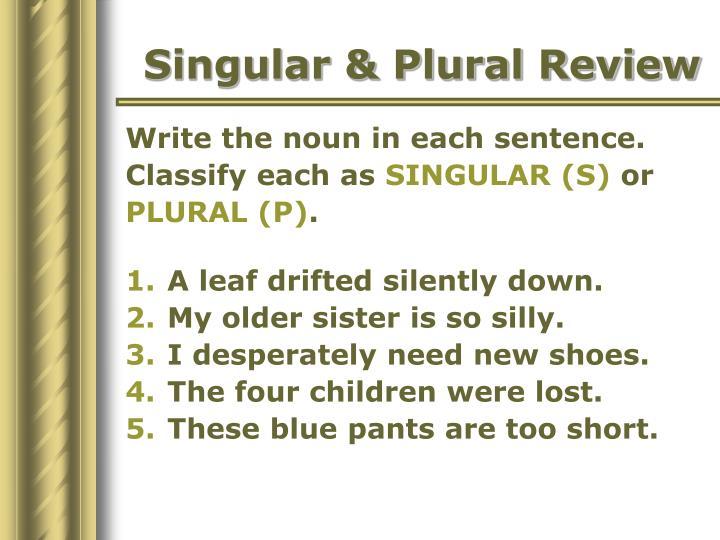 Singular & Plural Review