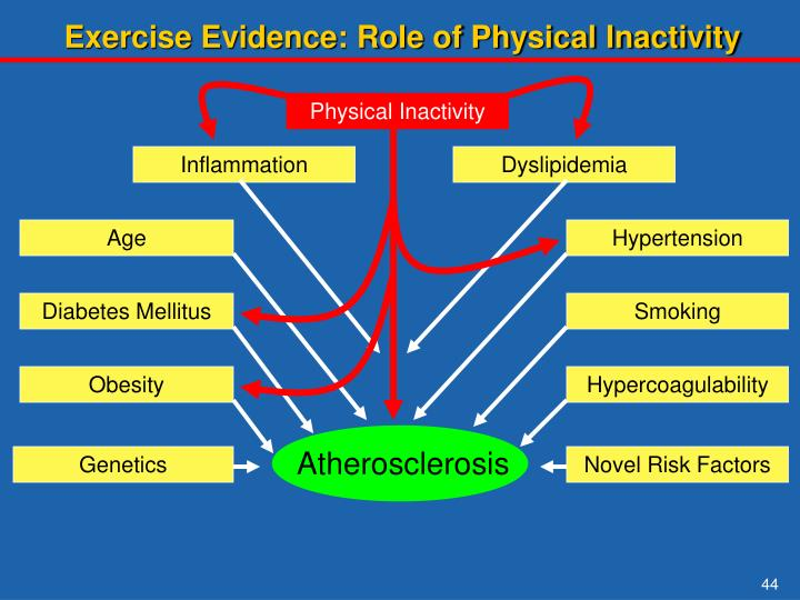 Exercise Evidence: Role of Physical Inactivity