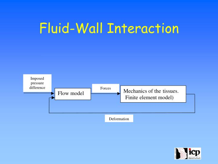 Fluid-Wall Interaction
