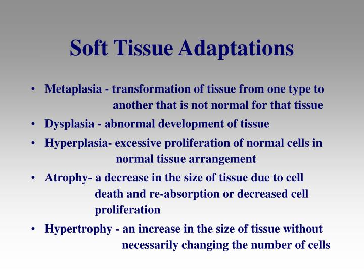 Soft Tissue Adaptations